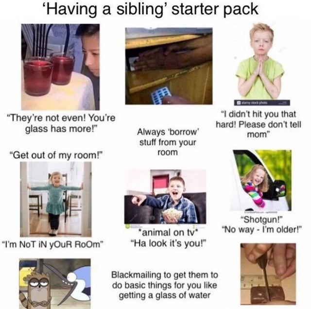"""Product - 'Having a sibling' starter pack """"They're not even! You're glass has more!"""" """"I didn't hit you that hard! Please don't tell mom"""" Always borrow' stuff from your room """"Get out of my room!"""" """"Shotgun!"""" """"No way - I'm older!"""" *animal on tv """"Ha look it's you!"""" """"I'm NoT iN yOuR RoOm"""" Blackmailing to get them to do basic things for you like getting a glass of water"""