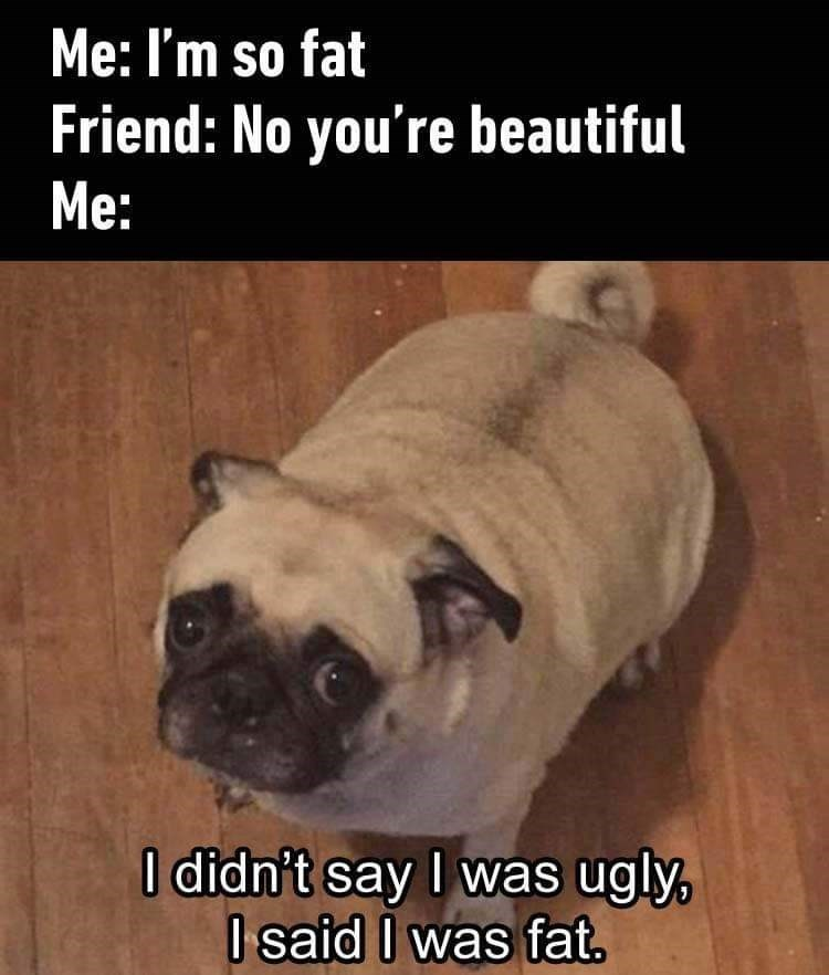 Pug - Me: I'm so fat Friend: No you're beautiful Me: I didn't say I was ugly, I said I was fat.