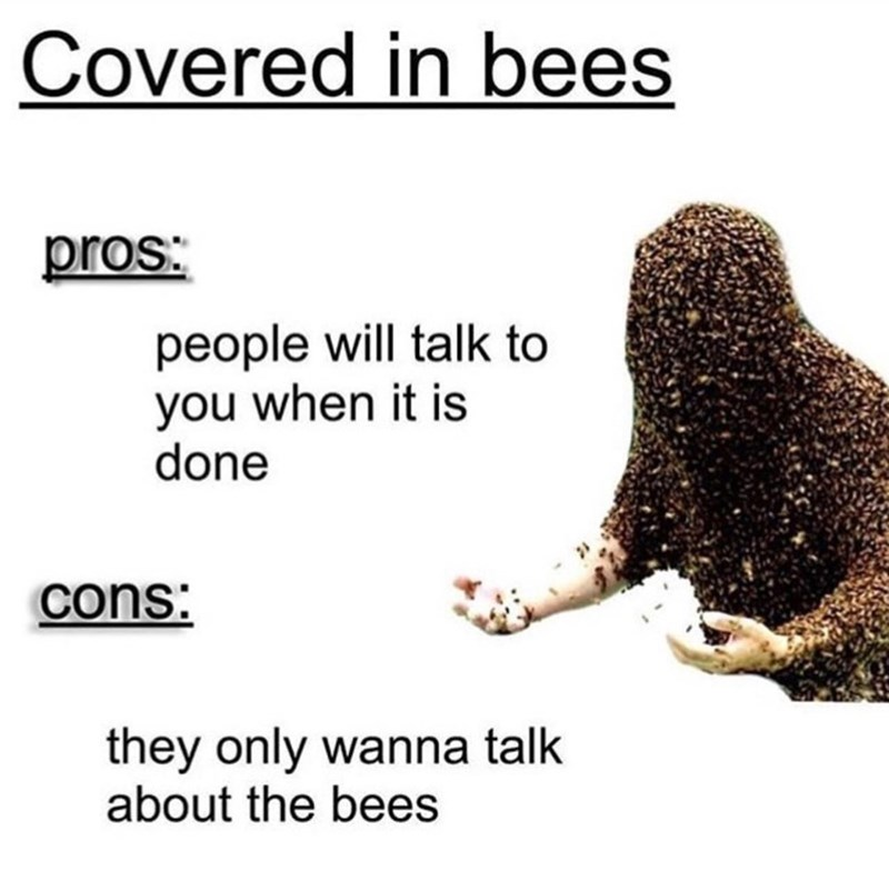 Text - Covered in bees pros: people will talk to you when it is done cons: they only wanna talk about the bees