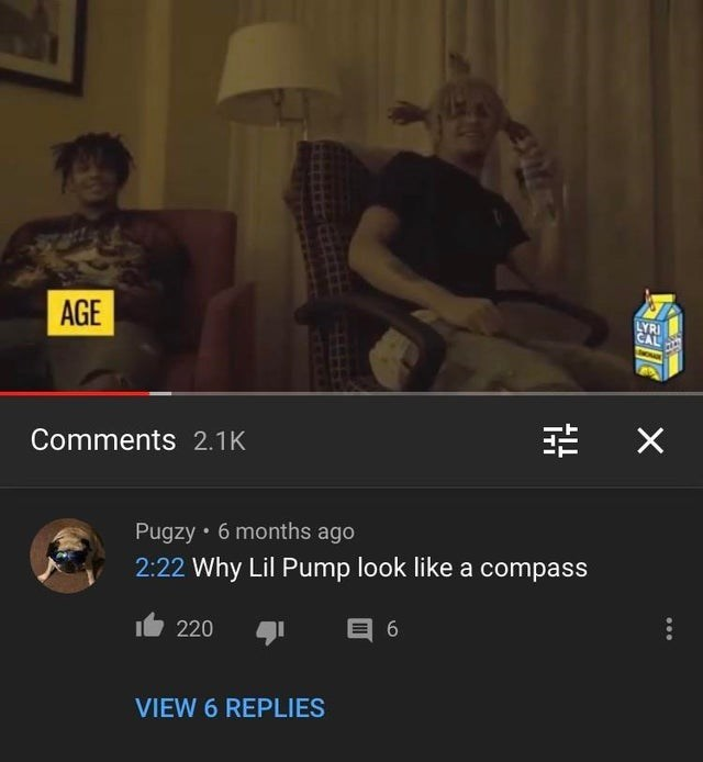 Text - AGE LYRI CAL Comments 2.1K Pugzy • 6 months ago 2:22 Why Lil Pump look like a compass 6 t 220 VIEW 6 REPLIES ...
