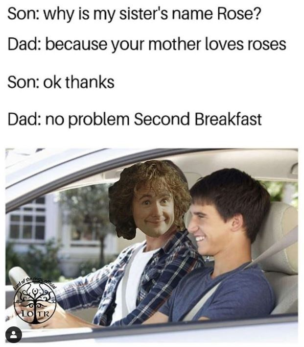 Product - Son: why is my sister's name Rose? Dad: because your mother loves roses Son: ok thanks Dad: no problem Second Breakfast Lord of LOTR