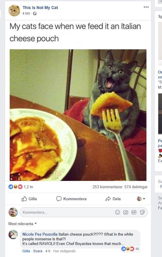 """Cuisine - 18 This Is Not My Cat 4 tim - 6 Sp My cats face when we feed it an Italian cheese pouch On on """"S ME Pa ра Ex Sv O=0 1,2 tn 253 kommentarer 574 delningar -F O Gilla O Dela Kommentera Se Ar Fa Kommentera. GIF Mest relevanta Nicole Pez Pezzolla Italian cheese pouch?!??? What in the white people nonsense is that?! It's called RAVIOLI! Even Chef Boyardee knows that much. 86 Gilla Svara -4 h Har redigerats"""