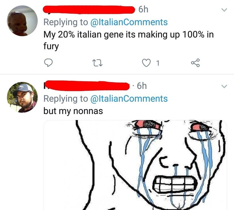 Face - 6h Replying to @ltalianComments My 20% italian gene its making up 100% in fury 1 · 6h Replying to @ltalianComments but my nonnas