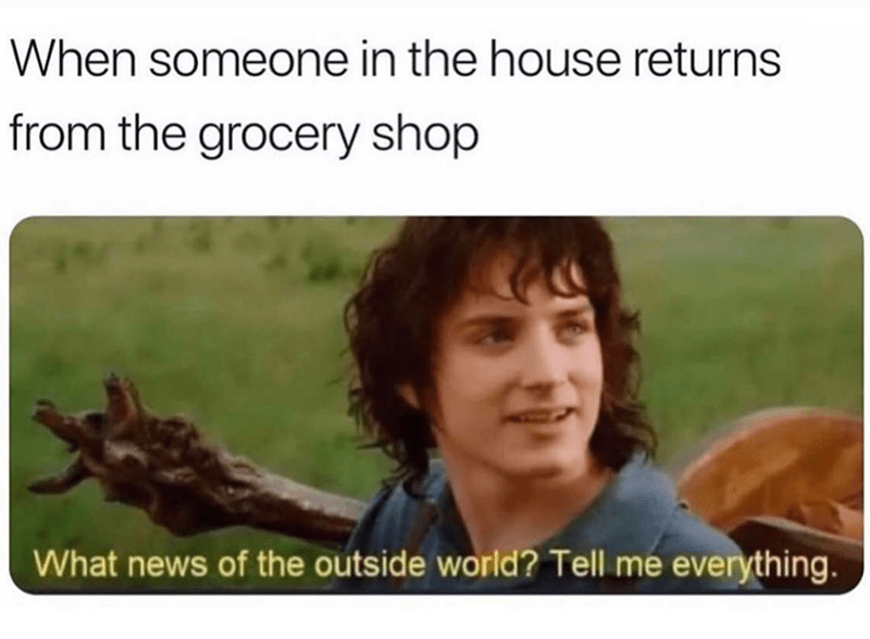 Funny meme featuring Frodo Baggins aboout grocery shopping in covid-19 times | When someone in the house returns from the grocery shop