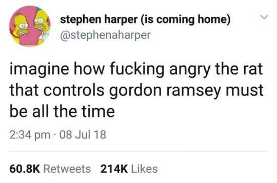 Text - stephen harper (is coming home) @stephenaharper imagine how fucking angry the rat that controls gordon ramsey must be all the time 2:34 pm · 08 Jul 18 60.8K Retweets 214K Likes
