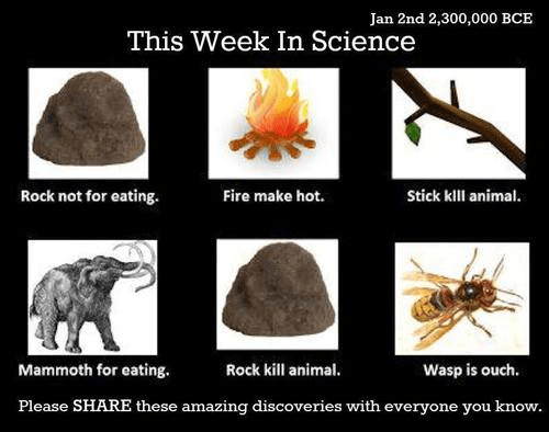 Organism - Jan 2nd 2,300,000 BCE This Week In Science Rock not for eating. Fire make hot. Stick kll animal. Mammoth for eating. Rock kill animal. Wasp is ouch. Please SHARE these amazing discoveries with everyone you know.