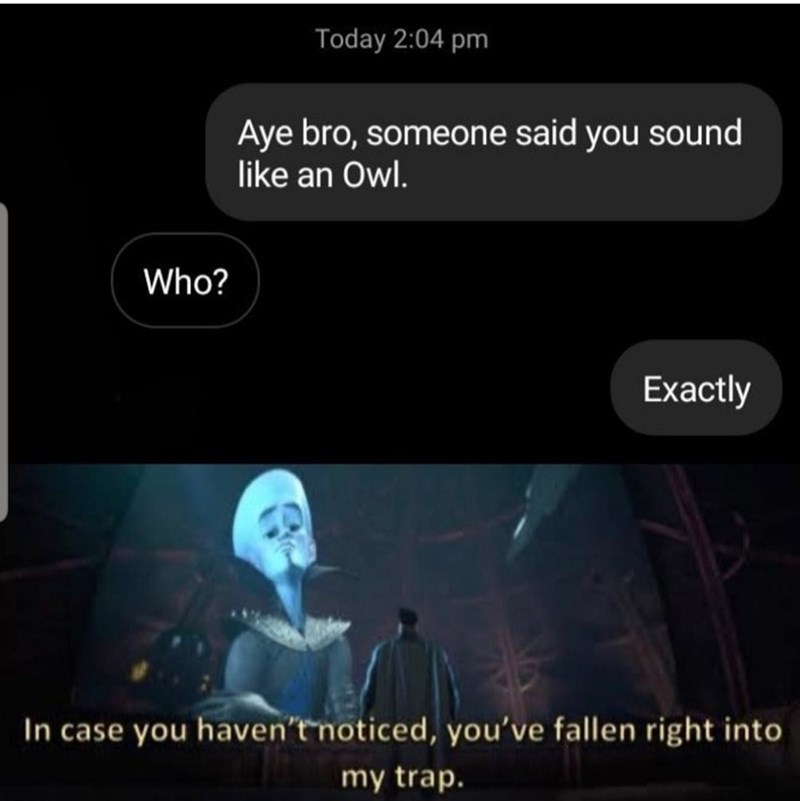 Text - Today 2:04 pm Aye bro, someone said you sound like an Owl. Who? Exactly In case you haven't noticed, you've fallen right into my trap.