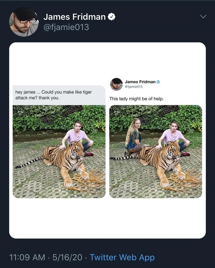 Bengal tiger - James Fridman O @fjamie013 James Fridman @fjamie013 hey james. Could you make like tiger attack me? thank you. This lady might be of help. 11:09 AM - 5/16/20 · Twitter Web App