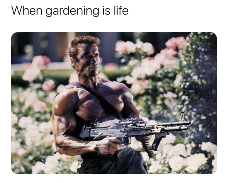 Muscle - When gardening is life