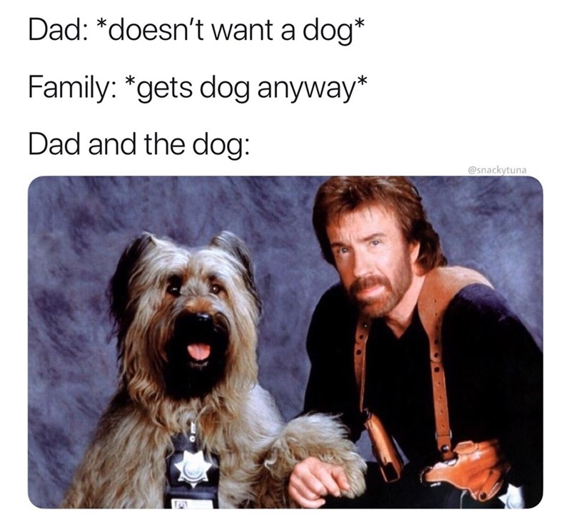 Dog - Dad: *doesn't want a dog* Family: *gets dog anyway* Dad and the dog: @snackytuna