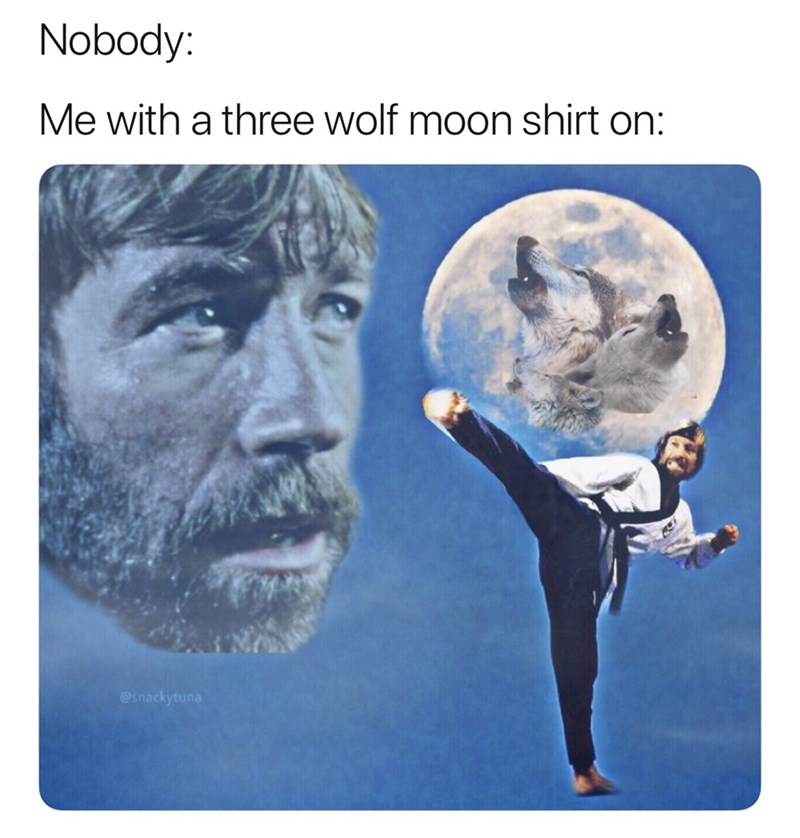 Text - Nobody: Me with a three wolf moon shirt on: @snackytuna