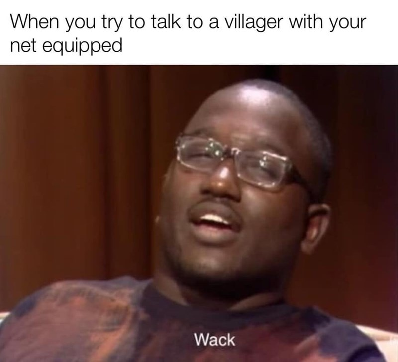 Face - When you try to talk to a villager with your net equipped Wack