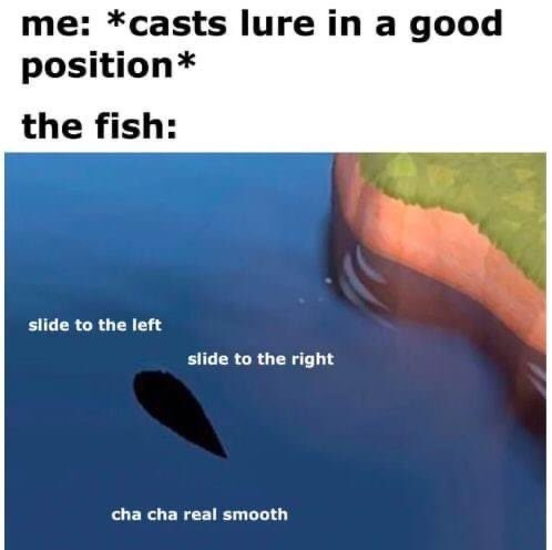 Text - me: *casts lure in a good position* the fish: slide to the left slide to the right cha cha real smooth
