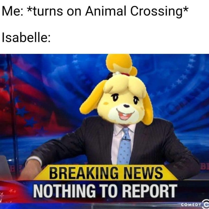 Photo caption - Me: *turns on Animal Crossing* Isabelle: *** BREAKING NEWS NOTHING TO REPORT BE COMEDY C