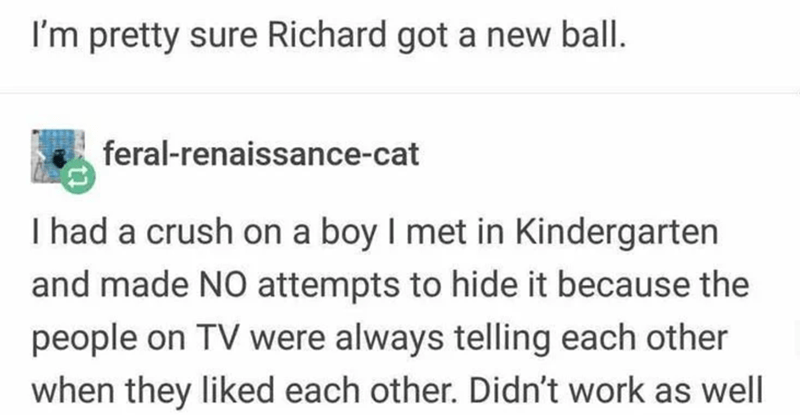 Text - I'm pretty sure Richard got a new ball. feral-renaissance-cat I had a crush on a boy I met in Kindergarten and made NO attempts to hide it because the people on TV were always telling each other when they liked each other. Didn't work as well