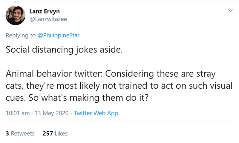 Text - Lanz Ervyn @Lanzwitazee Replying to @PhilippineStar Social distancing jokes aside. Animal behavior twitter: Considering these are stray cats, they're most likely not trained to act on such visual cues. So what's making them do it? 10:01 am · 13 May 2020 · Twitter Web App 3 Retweets 257 Likes >
