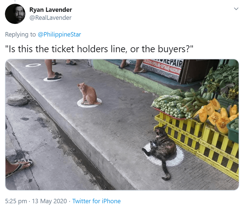 "Adaptation - Ryan Lavender @Real Lavender Replying to @PhilippineStar ""Is this the ticket holders line, or the buyers?"" KEPAIR ANUIOING OPENLINE OFTNARE-HARDWAR ORIE 5:25 pm · 13 May 2020 · Twitter for iPhone >"