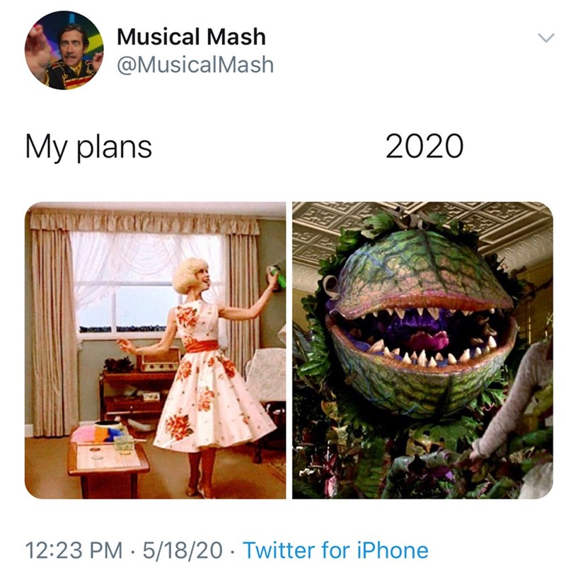 Adaptation - Musical Mash @MusicalMash My plans 2020 12:23 PM · 5/18/20 · Twitter for iPhone
