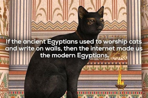 Cat - If the ancient Egyptians used to worship cats and write on walls, then the internet made us the modern Egyptians.