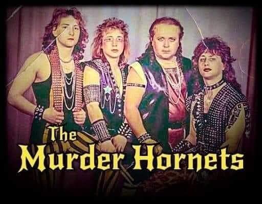 Cool - The Murder Hornets
