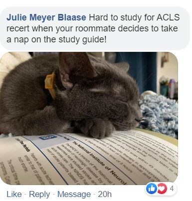 Cat - Julie Meyer Blaase Hard to study for ACLS recert when your roommate decides to take a nap on the study guide! er th tr archer cunges ne Or soan wit 45 m tes se her m approprate rof t l arriva and a brach of the National w of nologpie disease by ee of 3 Pour National bnstitute of Neurol Like Reply - Message 20h 4. ws e stucted stroke any sto ca The NINDS har eot atoke patents based At rs acute sche snr to that of patent nd shorter The artical time p prstoms Crt
