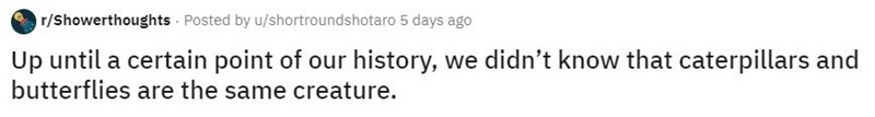 Text - r/Showerthoughts Posted by u/shortroundshotaro 5 days ago Up until a certain point of our history, we didn't know that caterpillars and butterflies are the same creature.