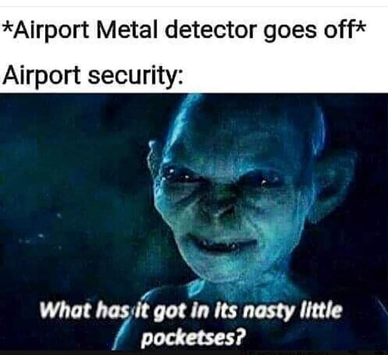 Text - *Airport Metal detector goes off* Airport security: What has it got in its nasty little pocketses?
