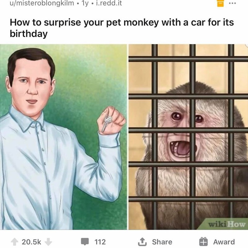 Face - u/misteroblongkilm • 1y • i.redd.it How to surprise your pet monkey with a car for its birthday wiki How 20.5k 112 Share Award