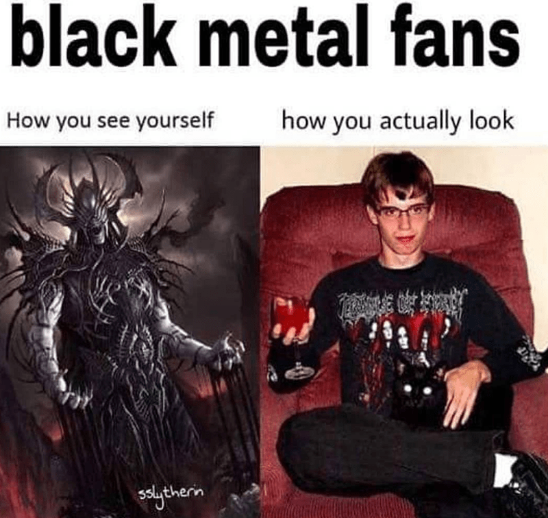 Album cover - black metal fans How you see yourself how you actually look solytherin