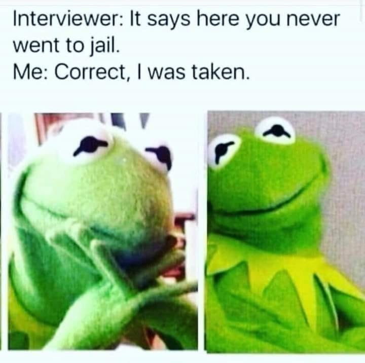 Frog - Interviewer: It says here you never went to jail. Me: Correct, I was taken.