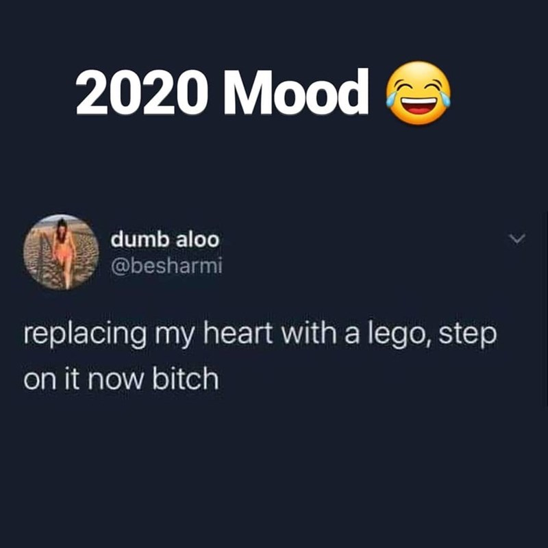 Text - 2020 Mood dumb aloo @besharmi replacing my heart with a lego, step on it now bitch