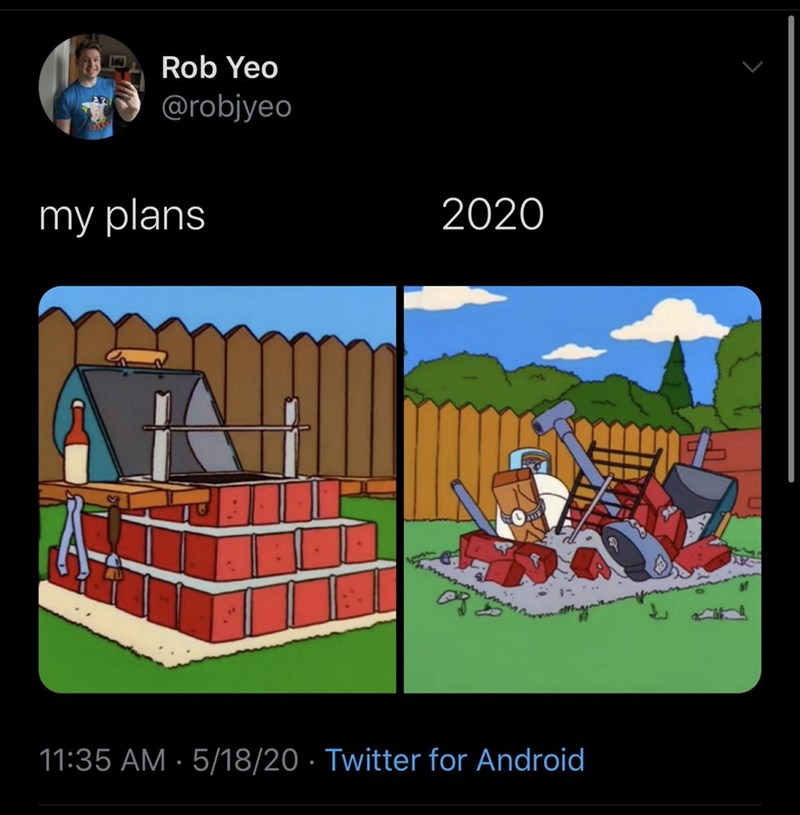 Cartoon - Rob Yeo @robjyeo my plans 2020 11:35 AM · 5/18/20 · Twitter for Android