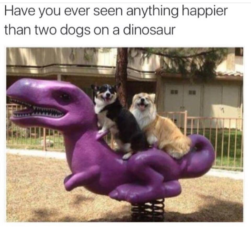 Photo caption - Have you ever seen anything happier than two dogs on a dinosaur