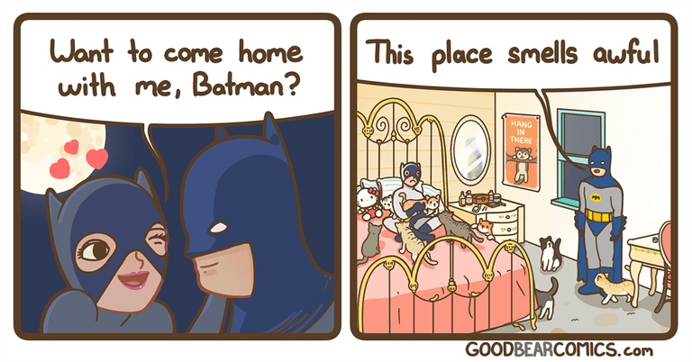 Cartoon - This place smells awful Want to come home with me, Batman? HANG IN THERE GOODBEARCOMICS.com