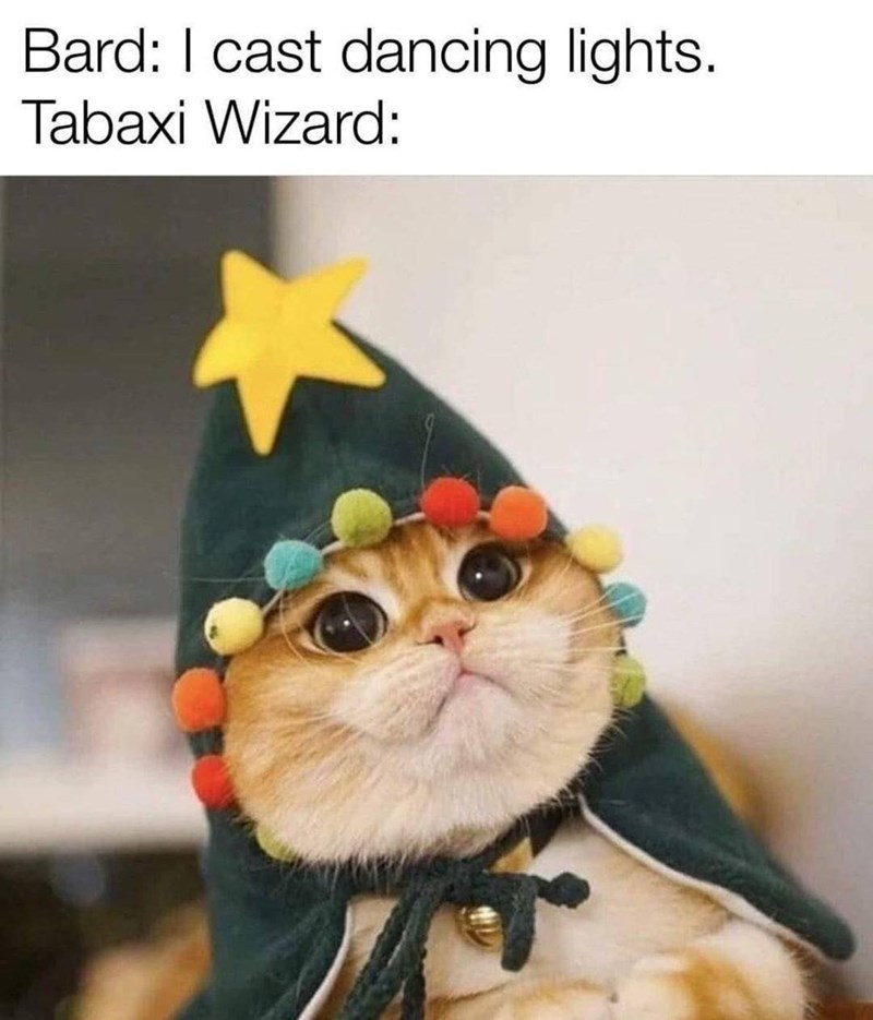 Cat - Bard: I cast dancing lights. Tabaxi Wizard: