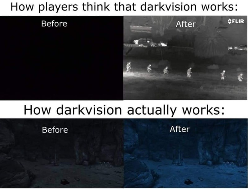 Text - How players think that darkvision works: Before After OFLIR How darkvision actually works: Before After