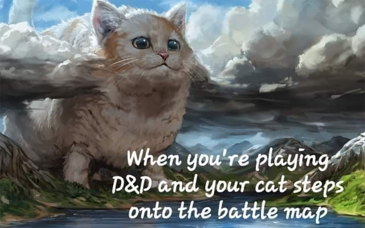 Cat - When you're pláying P&D and your cat steps onto the battle map