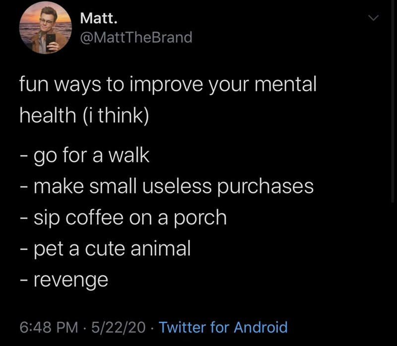 Text - Matt. @MattTheBrand fun ways to improve your mental health (i think) - go for a walk make small useless purchases - sip coffee on a porch - pet a cute animal - - revenge | 6:48 PM · 5/22/20 · Twitter for Android