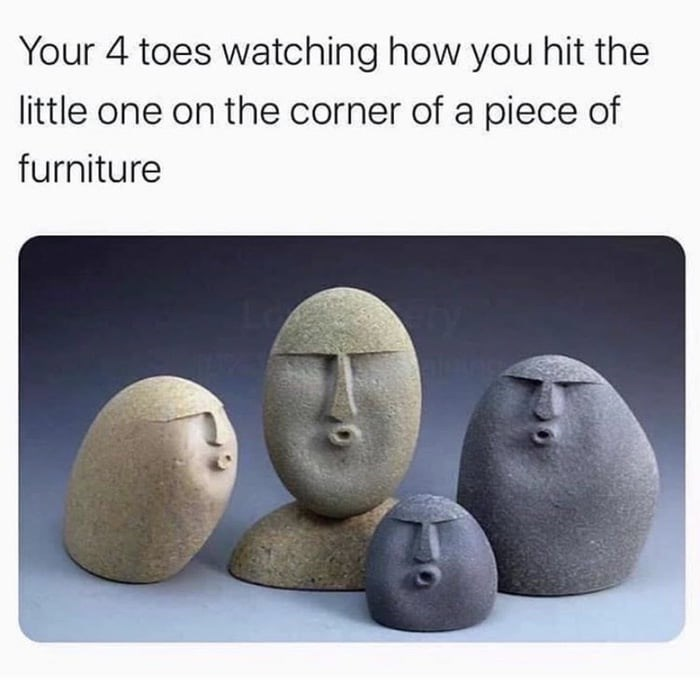 Text - Your 4 toes watching how you hit the little one on the corner of a piece of furniture