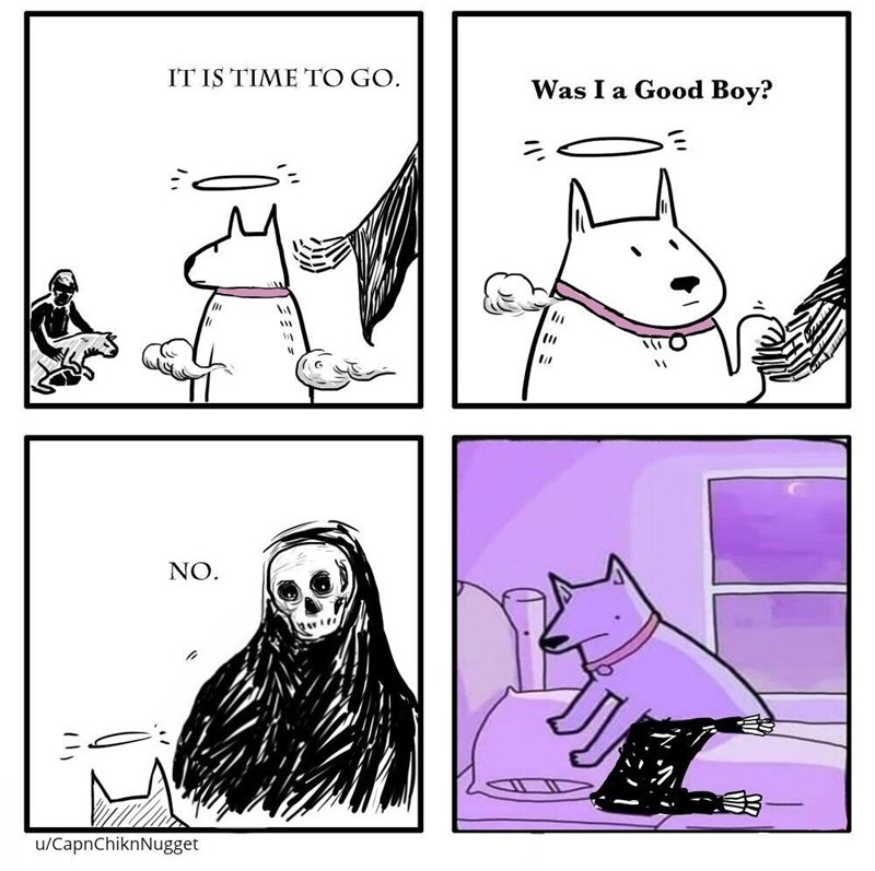 White - IT IS TIME TO GO. Was I a Good Boy? NO. u/CapnChiknNugget