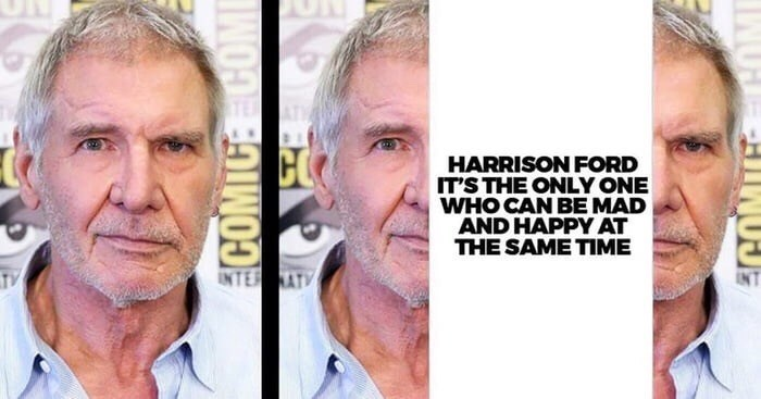 Face - HARRISON FORD IT'S THE ONLY ONE WHO CAN BE MAD AND HAPPY AT THE SAME TIME INTER NATY INT COMICE COME ECOMIC OMI