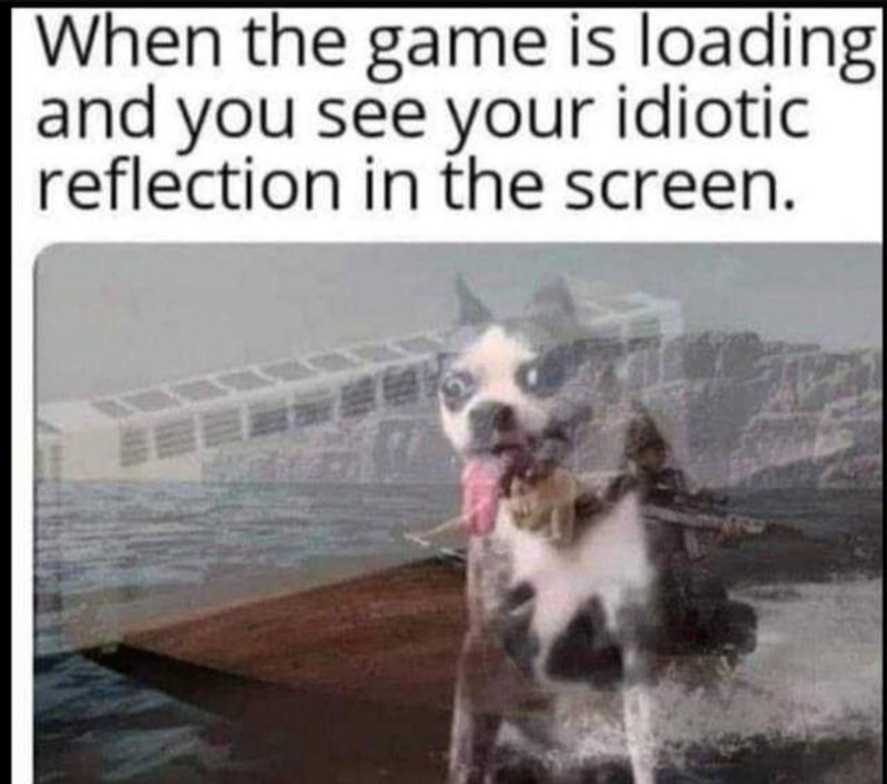 Dog breed - When the game is loading and you see your idiotic reflection in the screen.