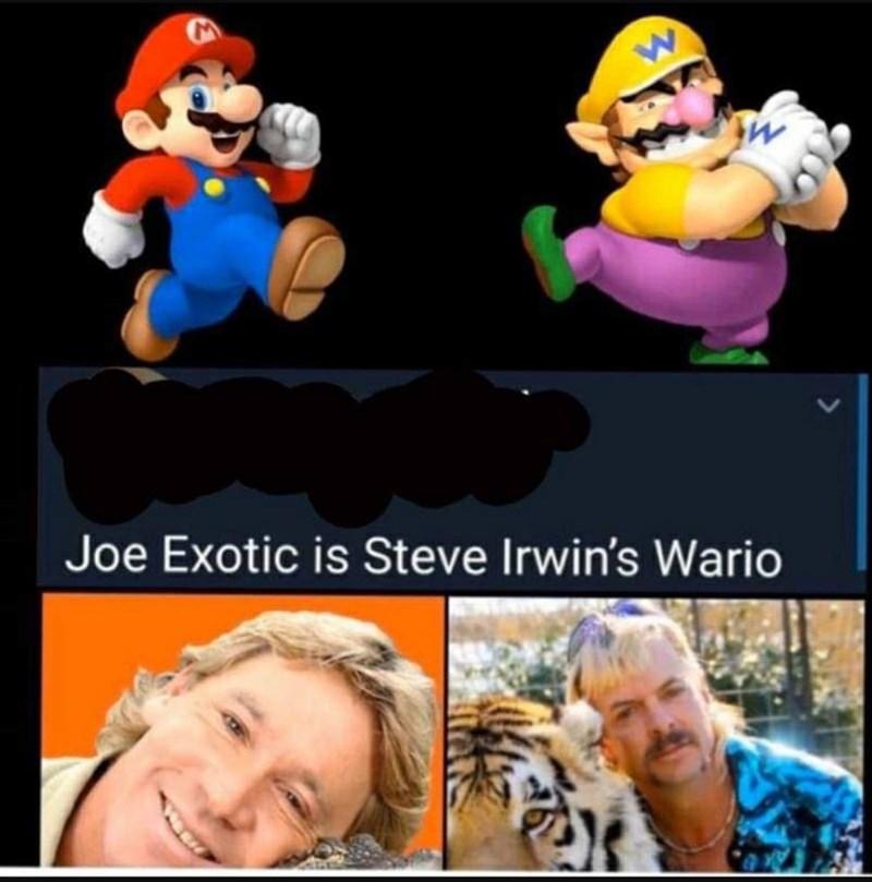 Animated cartoon - Joe Exotic is Steve Irwin's Wario