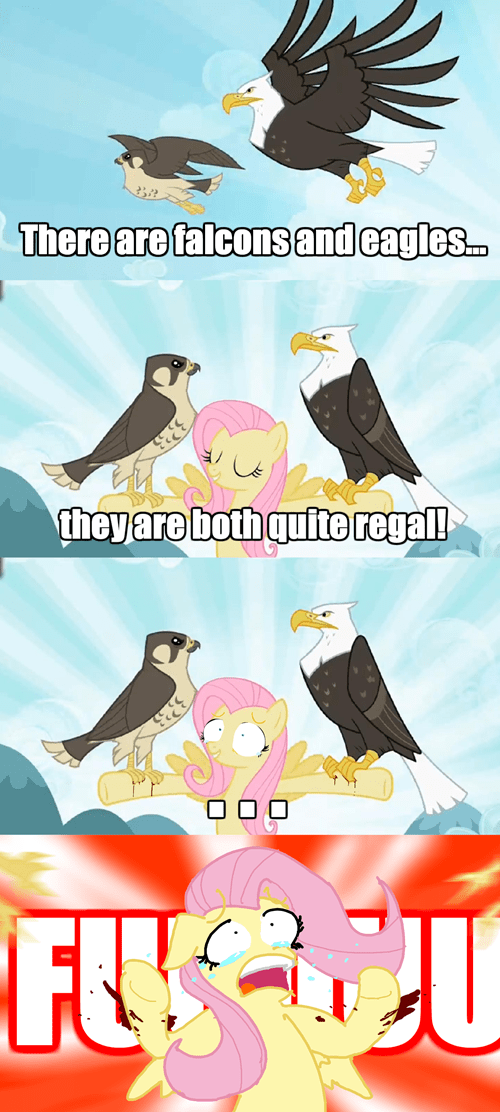 may the best pet win screencap fluttershy - 9489634816