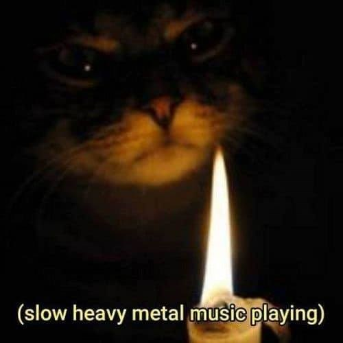 evil looking cat in the dark with its face lit up by a single candle slow heavy metal music playing