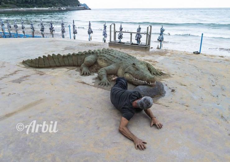 Crocodile - Arbil
