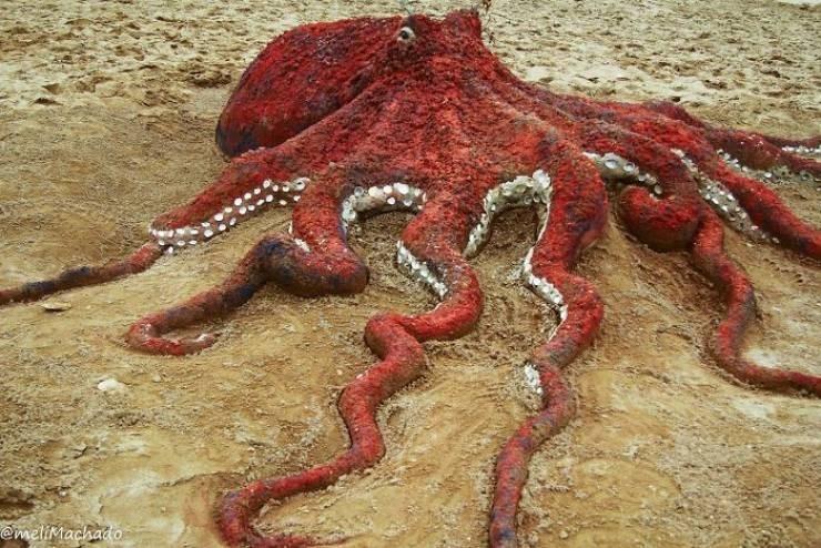 Octopus - @meliMachado