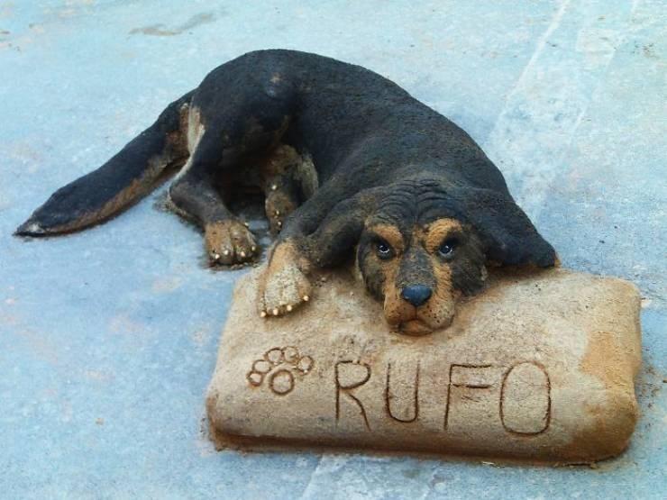Dog - RUFO