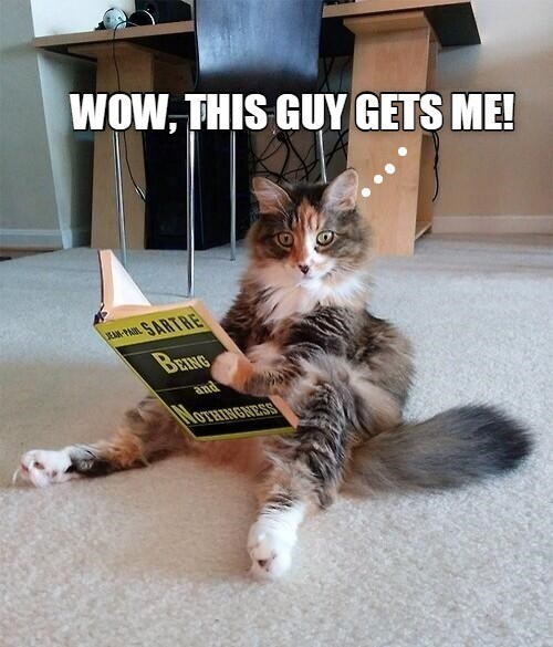 Cat - WOW, THIS GUY GETS ME! AM P SARTRE BRING and Mo RESS