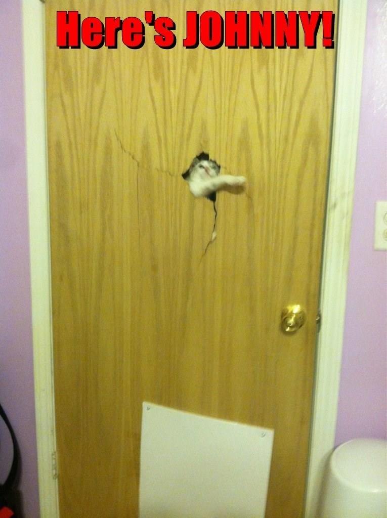 Door - Here's JOHNNY!
